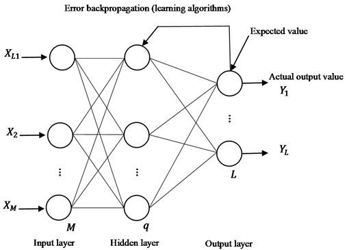 Typical three-layer feedforward BP neural network model