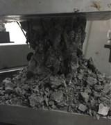 Destruction form of specimen in different test groups