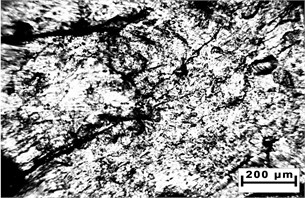 Surface of metal chips after impact in a hammer mill at 10x magnification