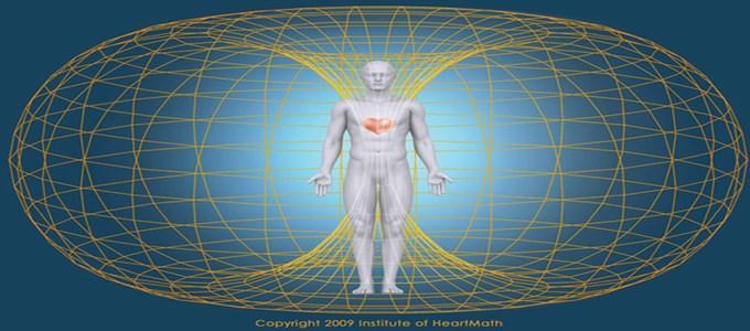 Human heart magnetic field [8]