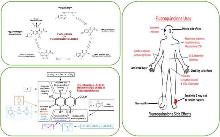 Mini Review: Is fluoroquinolone drug or poison?