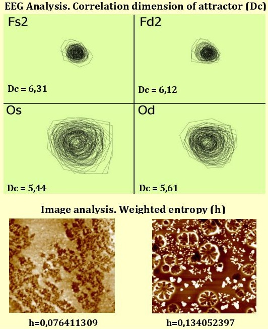 On application of dynamical system methods in biomedical engineering