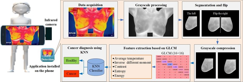 A portable breast cancer detection system based on smartphone with infrared camera