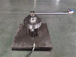 Torsional vibration test device