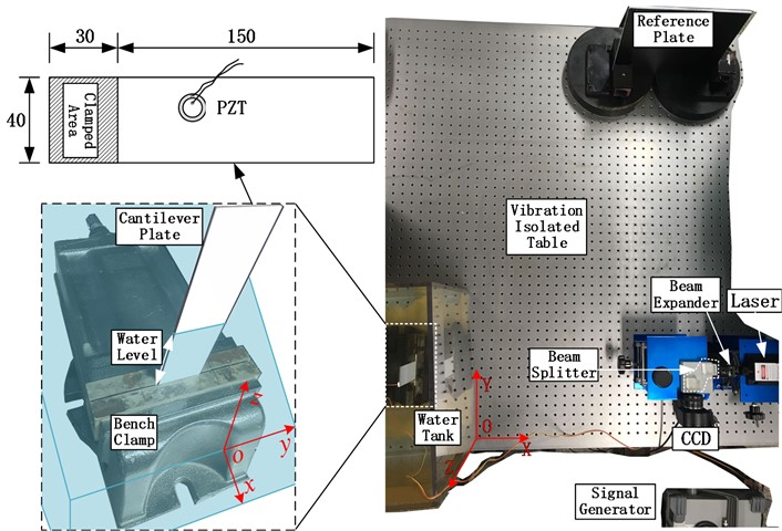 Experimental setup and model