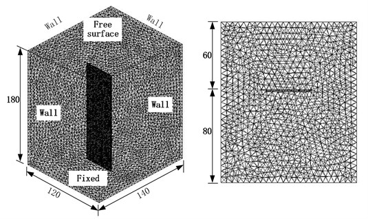 Fluid-structure coupled finite element model