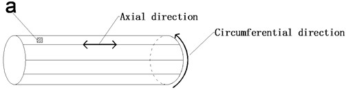 Simplified model of a geotube