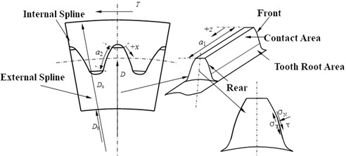 Model of involute spline couplings