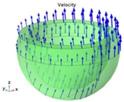 Oil film velocity vector distribution