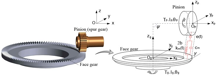 The dynamic model of the face gear pair