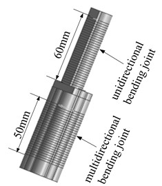 Three-dimensional model  of the finger