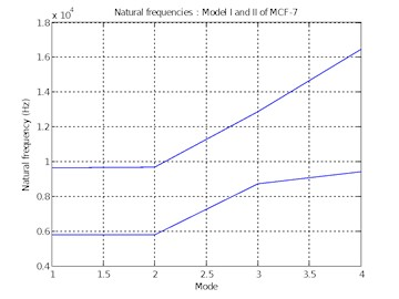 Natural frequencies of  Model I and II of MCF-7
