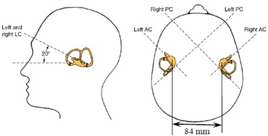 Spatial location and orientation of H-SCC