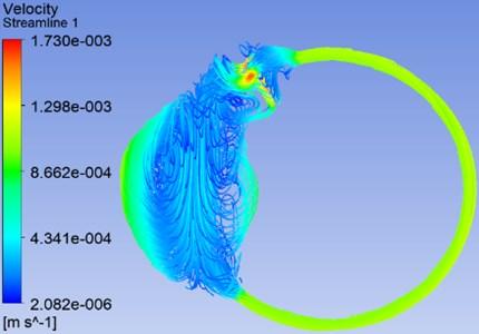 Streamline flow of endolymph at 0.873 rad/s rotational velocity of head