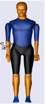 Initial position (Extreme left) (a) Elbow flexion (b) Elbow extension (c) Forearm pronation  (d) Forearm supination