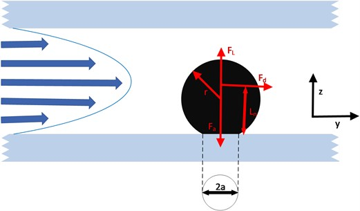 Schematic diagram of the force of particles in the pores