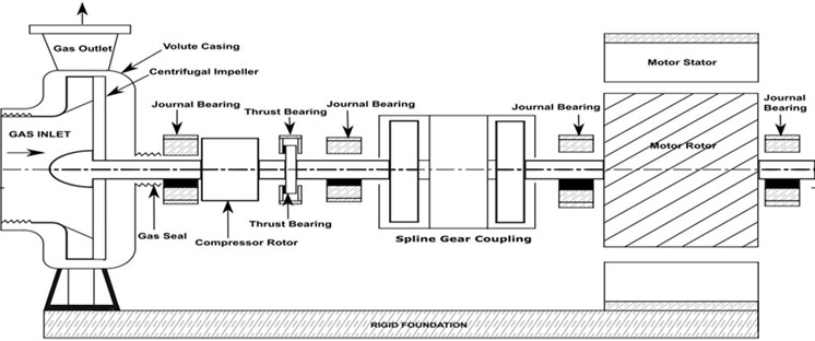 Schematic diagram of turbo machinery coupled with cage induction motor