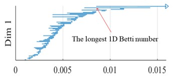 1D Betti numbers of experimental data