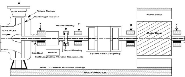 A schematic of turbomachinery and coupled squirrel cage induction motor
