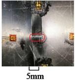 Damage of specimen FM-1