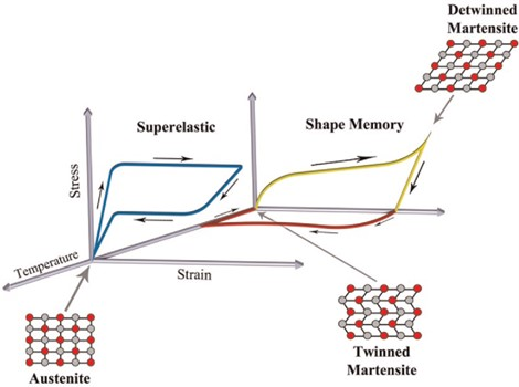 Thermomechanical structures of SMAs [6]