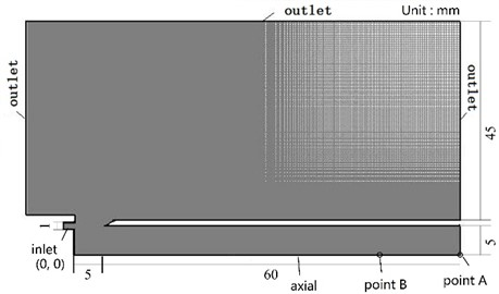 Calculation grid of the flow field
