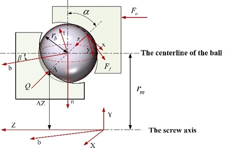 Contact model of the ball between nut and raceway