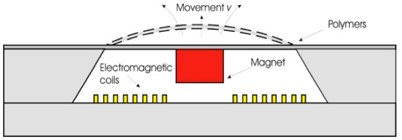 Cross-sectional view of polymer based EM actuator:  a) with moving permanent magnet, b) with moving coil. Adapted from [79]