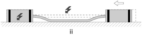 Scratch drive actuator, adapted from [118]