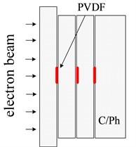 A schematic diagram of PVDF instrument